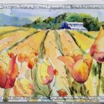 Watercolor painting of yellow and red tulips